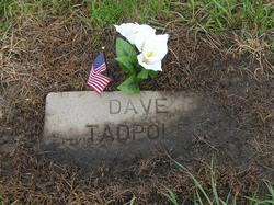 David Tadpole, Jr