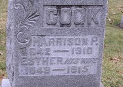Harrison Peter Cook