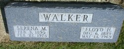 Serena M Walker