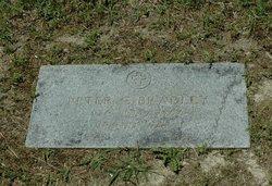 Peter C Bradley
