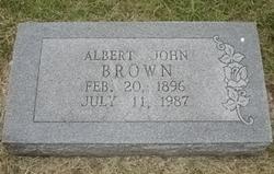 Albert John Brown