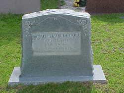 Sarah Elizabeth <I>Works</I> Davis