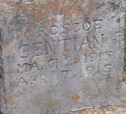 Roscoe Gentian