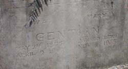William A Gentian
