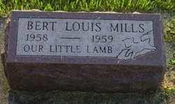 Bert Louis Mills