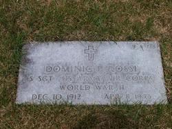 Dominic P Rossi