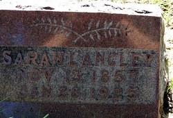 Sarah Jane <I>Hankins</I> Langley