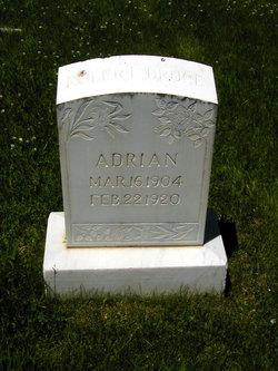 Robert Bruce Adrian