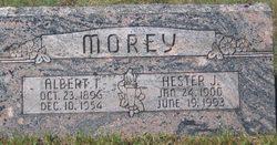 "Albert Irwin ""Butch"" Morey"