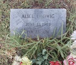 Alice Ludwig