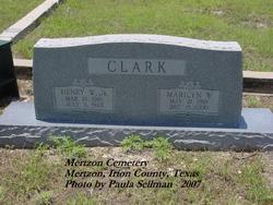 Henry Willis Clark, Jr