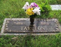 Dr Adrian L. Tarlton