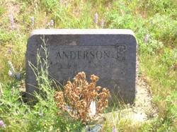 Anna H. <I>Brattlund</I> Anderson