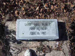 Daisy Opal Horne