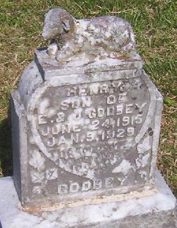 Henry Godbey