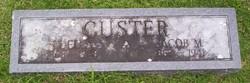 Luella <I>Rich</I> Custer