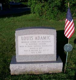 Louis Alojz Adamic