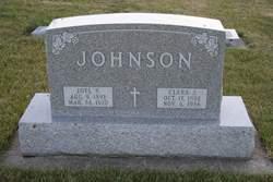 Joel Perry Johnson