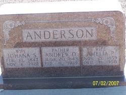 Amelia <I>Peterson</I> Anderson