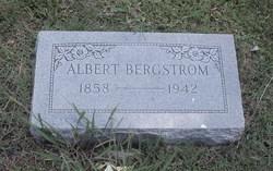 Albert Bergstrom