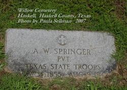 Andrew Witt Springer