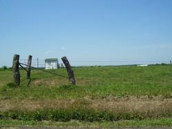 Davis Cemetery (West)