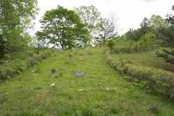 Hollon Cemetery