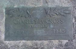 Charlie Harold Gross