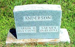 Larkin H. Anderson