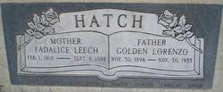 Golden Lorenzo Hatch