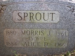 Alice D. Sprout