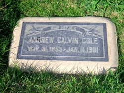 Andrew Calvin Cole