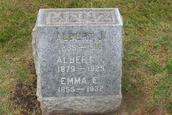 Albert J Menz