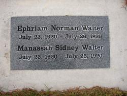 Manassah Sidney Walter