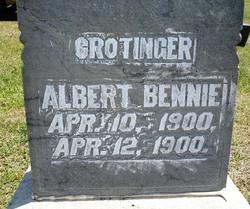 Albert Bennie Crotinger