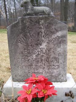 William B. Bushey