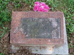 Horace Jackson Arnett
