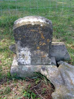 Sarah Ann Jane Davis