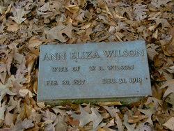 Eliza Ann <I>Cline</I> Wilson