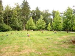 Upper Hillside Cemetery