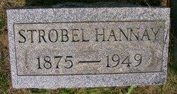 Strobel Ervin Hannay