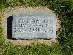Dixie Joy Egg
