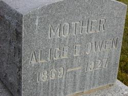 Alice Elizabeth <I>Janes</I> Owen