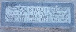 David T Brown