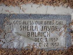 Sheila Jayne Balaich