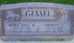 Brandt Spring Gessel
