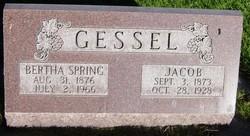 Bertha <I>Spring</I> Gessel