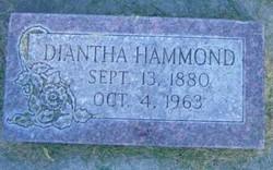 Diantha Hammond