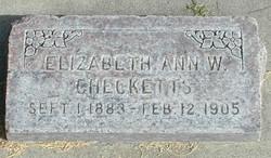 Elizabeth Anne <I>Weedop</I> Checketts