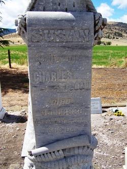 """Susannah """"Susan"""" <I>Stevens</I> Edson"""